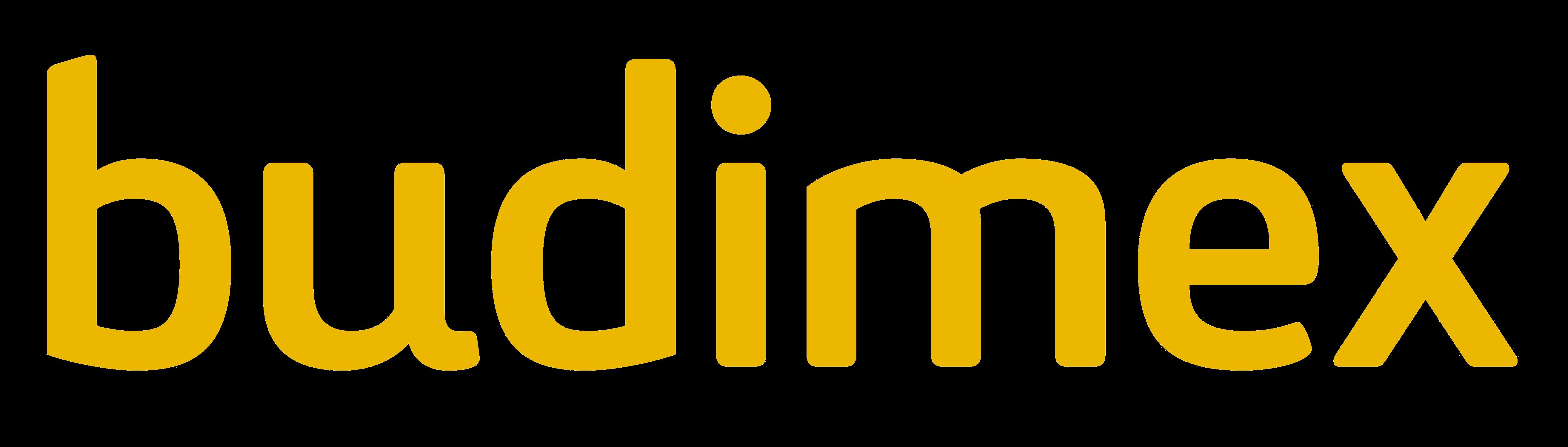 Logo_Budimex